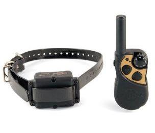 remote dog training